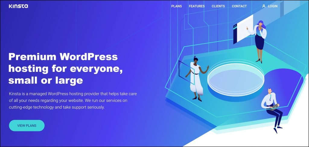 Kinsta Web Hosting Site