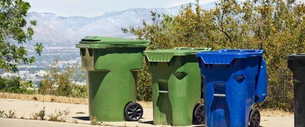 Neighborhood trash bins