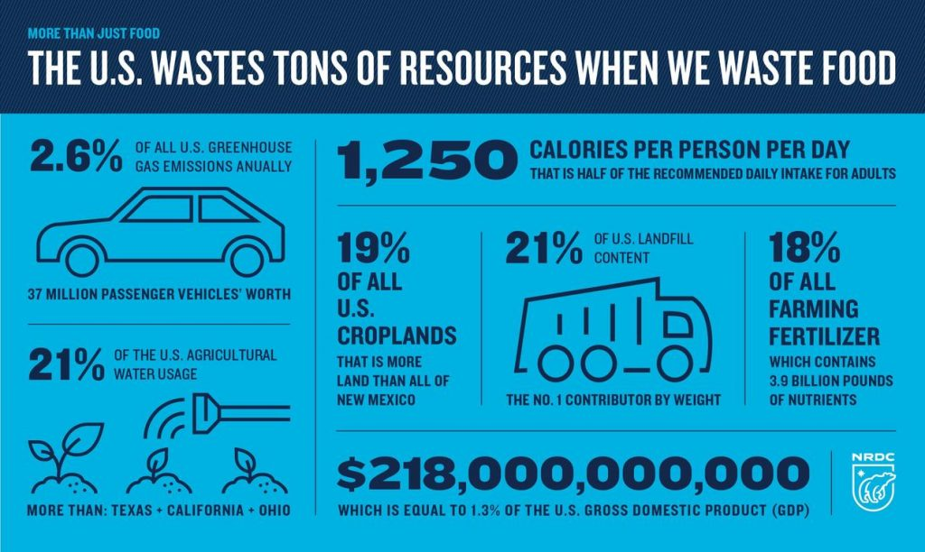 Wasted food resource infographic